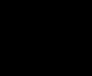 פרש דה מרקט לוגו שחור